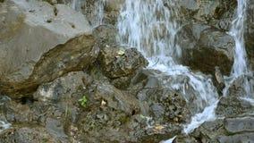 Cachoeira pequena da cascata de pressa do rio da montanha sobre pedras video estoque
