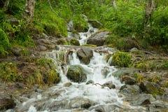 Cachoeira pequena de um córrego Foto de Stock
