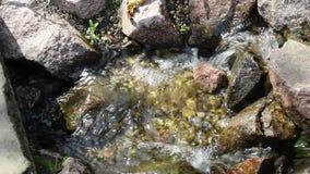 A cachoeira pequena do córrego relaxa sadio video estoque
