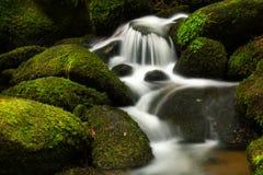 Cachoeira pequena II Imagens de Stock