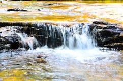 Cachoeira pequena na floresta úmida em Wentworth Falls, Novo Gales do Sul, Austrália imagens de stock royalty free