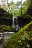 Cachoeira pequena na floresta do outono Fotos de Stock