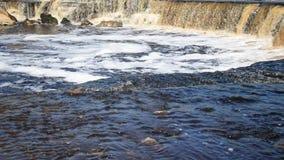 Cachoeira pequena no dia ensolarado vídeos de arquivo