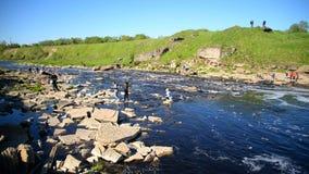 Cachoeira pequena no dia ensolarado video estoque