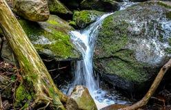 Cachoeira pequena no movimento Fotografia de Stock
