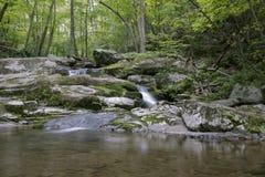 Cachoeira pequena no parque nacional de Shenandoah Foto de Stock