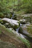 Cachoeira pequena no parque nacional de Shenandoah Fotografia de Stock
