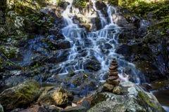 Cachoeira pequena no parque nacional de Springbrook Foto de Stock