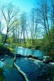 Cachoeira pequena no rio Fotografia de Stock