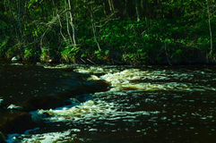 Cachoeira pequena no rio Fotografia de Stock Royalty Free