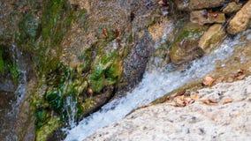 Cachoeira pequena no rio, durante a queda com folhas coloridas imagem de stock royalty free
