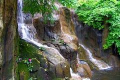 Cachoeira pequena no trópico Fotos de Stock Royalty Free