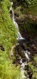 Cachoeira pequena que corre através da selva foto de stock