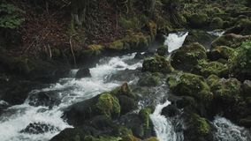 Cachoeira pequena que flui abaixo das rochas, rio da montanha que Raging entre as rochas na floresta, montanhas caucasianos, Euro video estoque