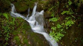 A cachoeira pequena sobre o musgo cobriu rochas Imagem de Stock Royalty Free