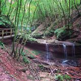 Cachoeira pitoresca na floresta Foto de Stock Royalty Free