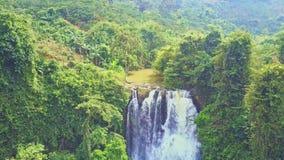Cachoeira poderosa da vista superior próxima entre árvores filme