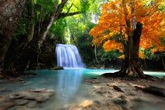 Cachoeira profunda da floresta foto de stock