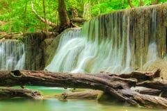 Cachoeira profunda da floresta em Tailândia foto de stock royalty free