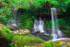 Cachoeira profunda da floresta em Tailândia imagem de stock royalty free