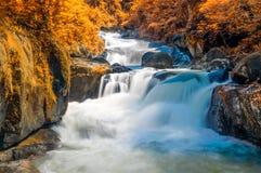 Cachoeira profunda da floresta no outono Imagens de Stock Royalty Free