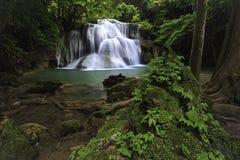 Cachoeira profunda em Kanchanaburi, Tailândia da floresta Fotografia de Stock Royalty Free