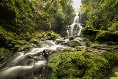 Cachoeira que corre através de rochas do molde verde fotografia de stock