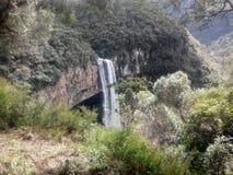 Cachoeira robi caracol - Brasil Zdjęcie Stock