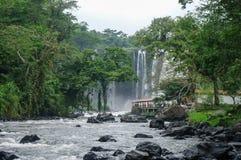 Cachoeira Salto de Eyipantla Imagens de Stock Royalty Free