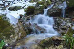 Cachoeira selvagem Fotos de Stock Royalty Free