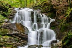 Cachoeira Shypit, cascata em Pylypets na carpa da floresta do outono Fotografia de Stock Royalty Free