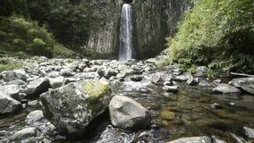 Cachoeira sobre a junção columnar video estoque
