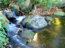Cachoeira sul 2 do banco Imagens de Stock Royalty Free