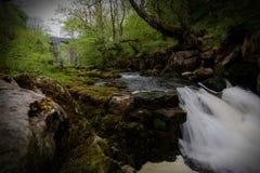 Cachoeira Sunlit Fotos de Stock Royalty Free