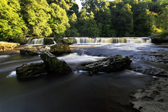 Cachoeira superior Aysgarth Fotografia de Stock Royalty Free