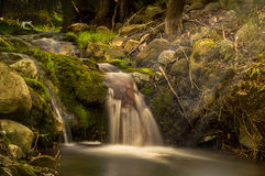 Cachoeira Tiverton Ontário Canadá da mola foto de stock