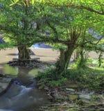 Cachoeira trakan do bate-papo Foto de Stock Royalty Free
