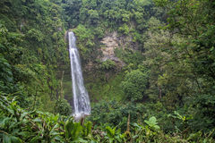 Cachoeira tropical fotografia de stock
