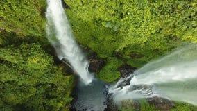Cachoeira tropical bonita Bali, Indonésia filme