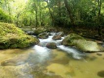 Cachoeira tropical da montanha Fotos de Stock Royalty Free