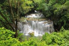 Cachoeira tropical na floresta úmida Imagem de Stock