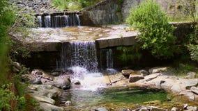 Cachoeira, uma montanha pequena Alpine Creek, rio claro, limpo, água potável dia de verão, na floresta, no vídeos de arquivo