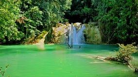Cachoeira verde fotografia de stock royalty free