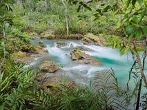 Cachoeira verde do rio dos lagos da água com a árvore da raiz em Tha Pom Klong Song Nam, Krabi, Tailândia Imagem de Stock