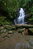 Cachoeira veu de noiva Royaltyfri Fotografi