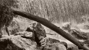 Cachoeiras video estoque