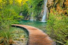 Cachoeiras Imagens de Stock Royalty Free