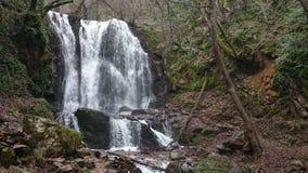 Cachoeiras filme