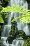 Cachoeiras imagem de stock royalty free