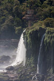 Cachoeiras Argentina Brasil de Iguassu Fotos de Stock Royalty Free